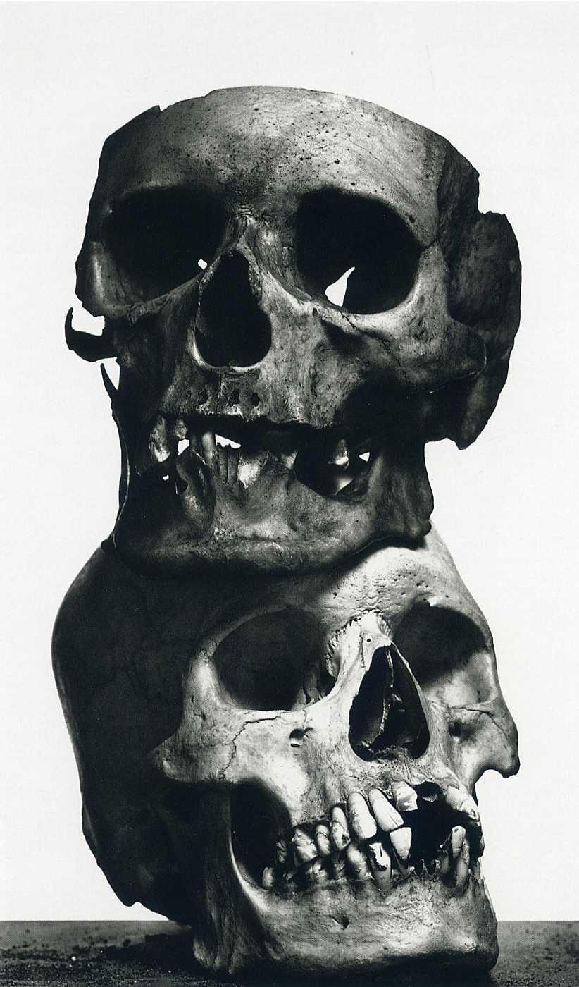 Tumblr Skulls And Flowers