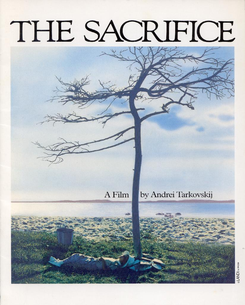 sacrifice in conflict Is war a ritual human sacrifice by acharya s the conflict between these groups goes back to the time of human sacrifice was prevalent in many societies.